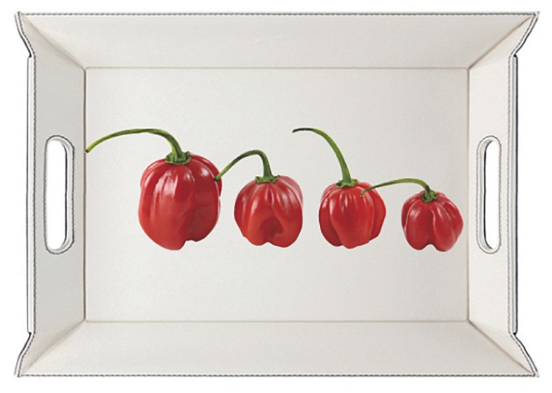 Décor Piments rouges